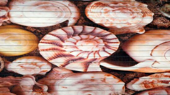 Alfombra de Bambu impreso CARACOLAS