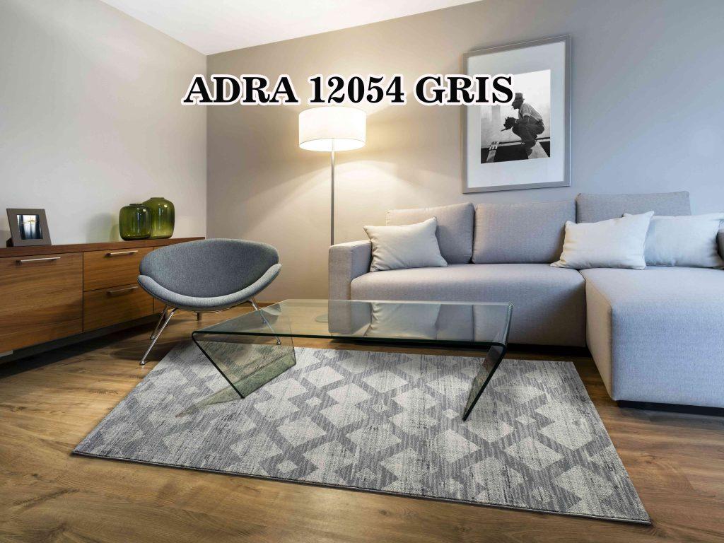 ADRA-12054-GRIS---AMB